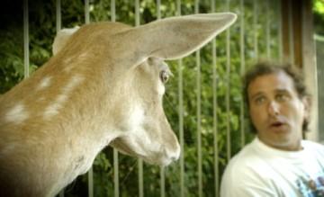 Dean with Deer
